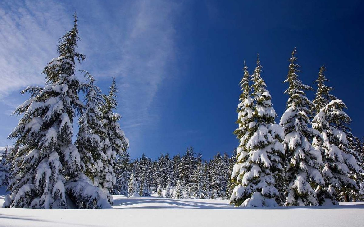 snow-1902052_1280_optimized